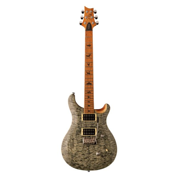 PRS SE Custom 24, Roasted Maple Neck, Tampas Green, Electric guitar, PRS near me, PRS Cape Town