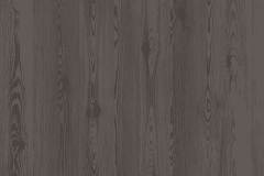 Anthracite-Mountain-Larch
