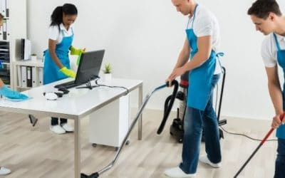 What specialised services professional cleaners can do better