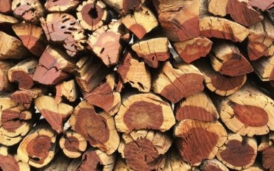 What are Namibian hardwoods and what makes them special?